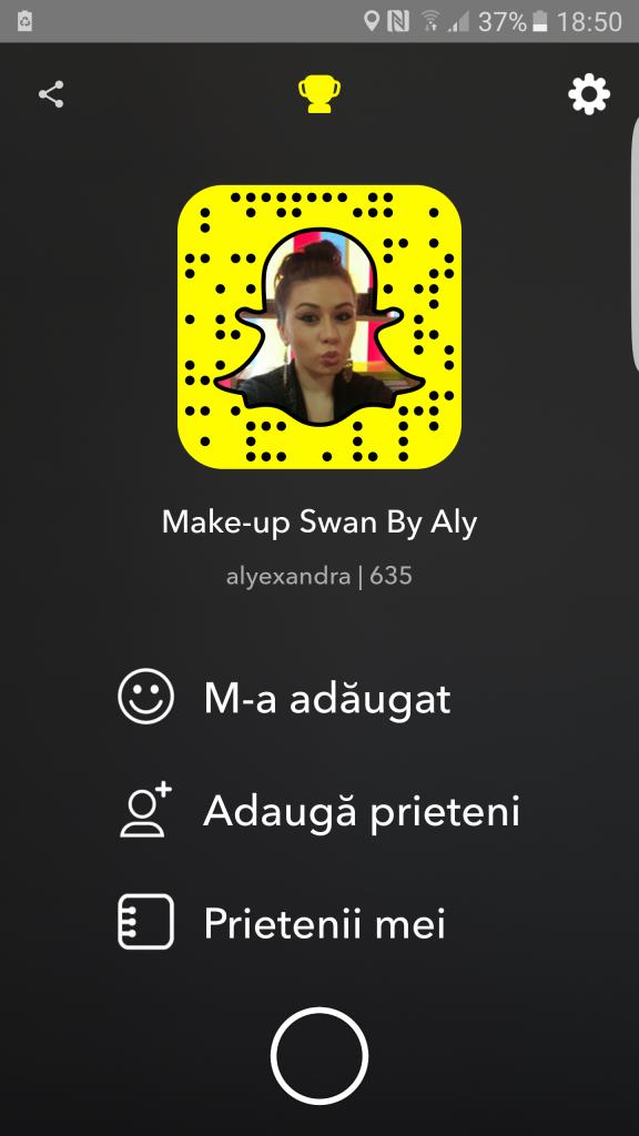 snapchat-incepatori-makeupswan (5)